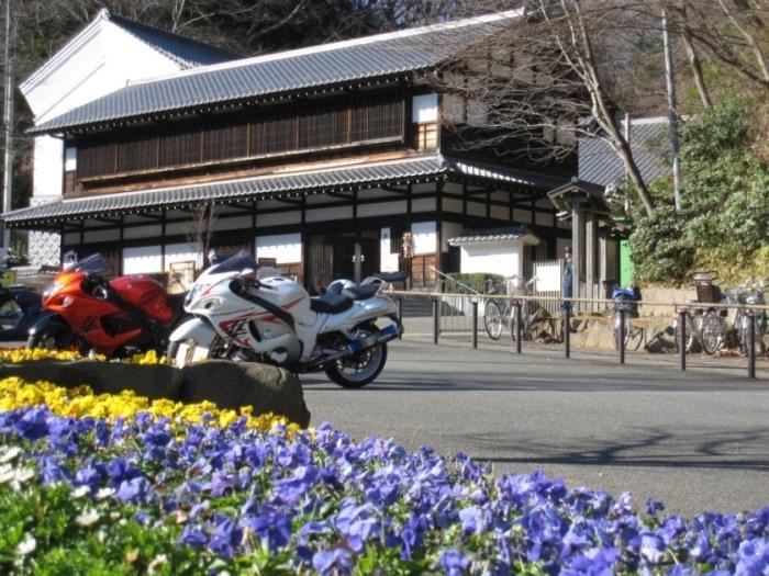 2010-01-06-002.jpg