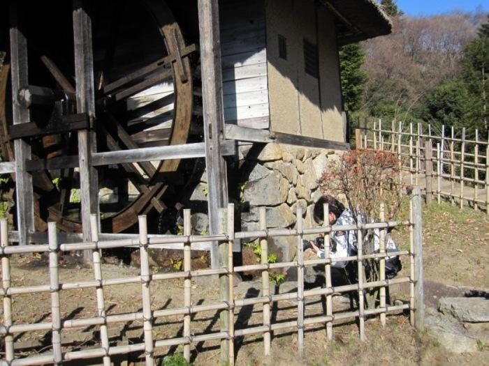 2010-01-06-005.jpg