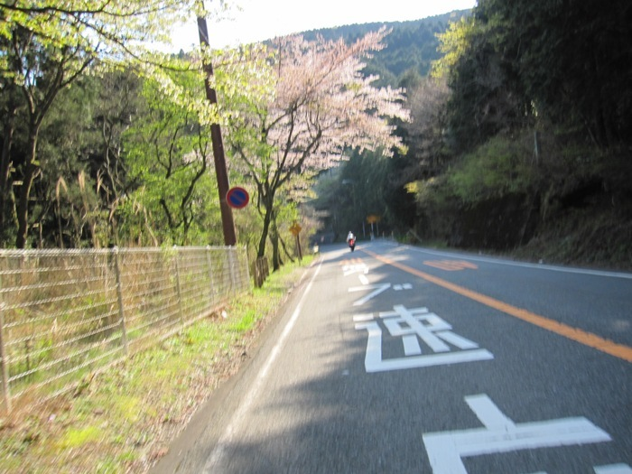 2010_04_25_026.jpg