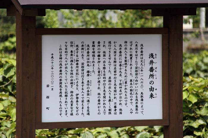 2010_08_02_007.jpg