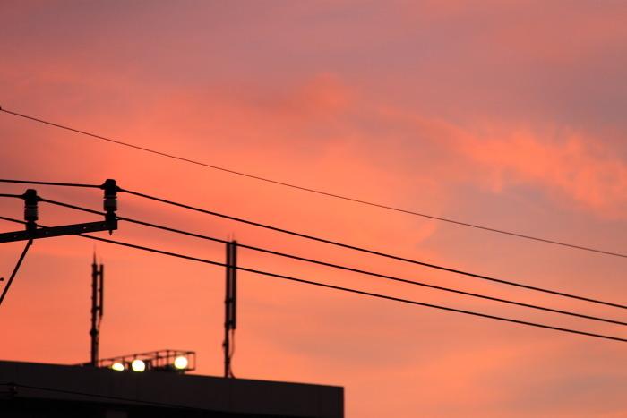 2010_08_29_031.jpg