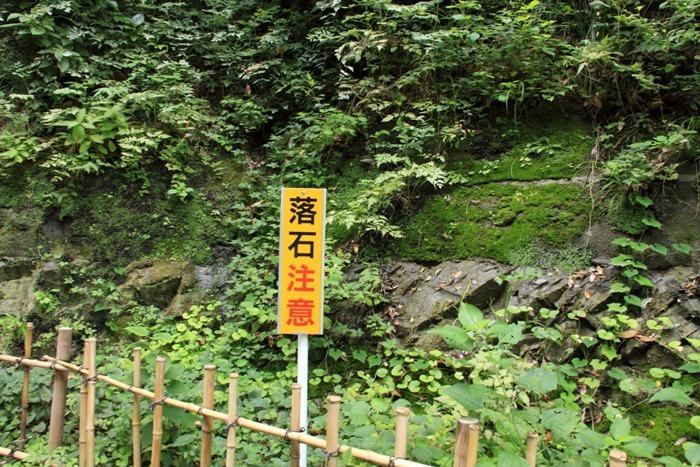 2010_09_01_006.jpg