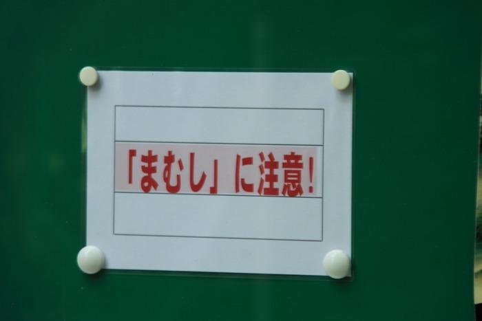 2010_09_01_007.jpg