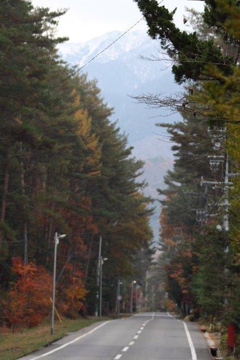 2010_11_14_005.jpg