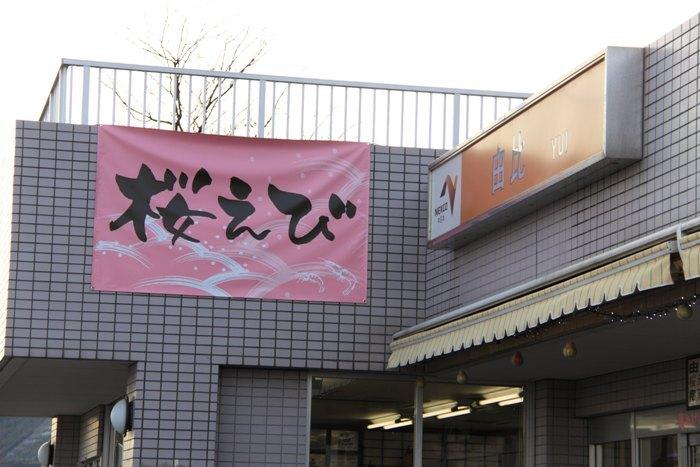 2010_12_28_034.jpg