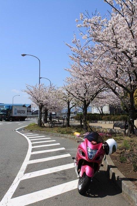 2011_04_12_007.jpg