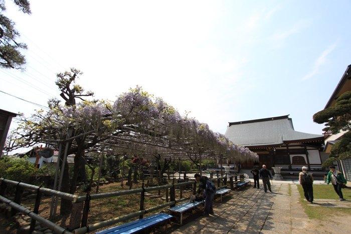 2011_04_26_003.jpg