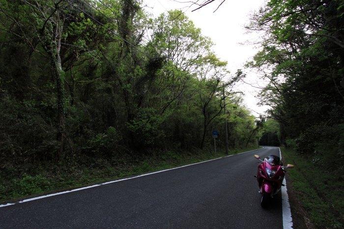 2011_04_26_009.jpg