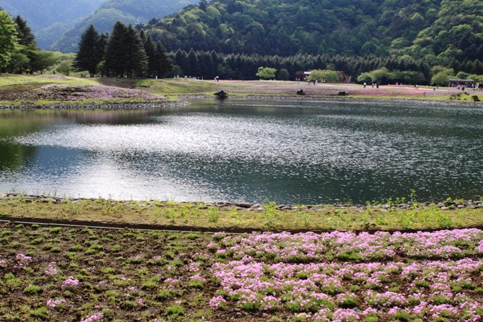 2011_05_25_017.jpg