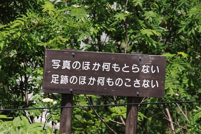 2011_07_06_029.jpg