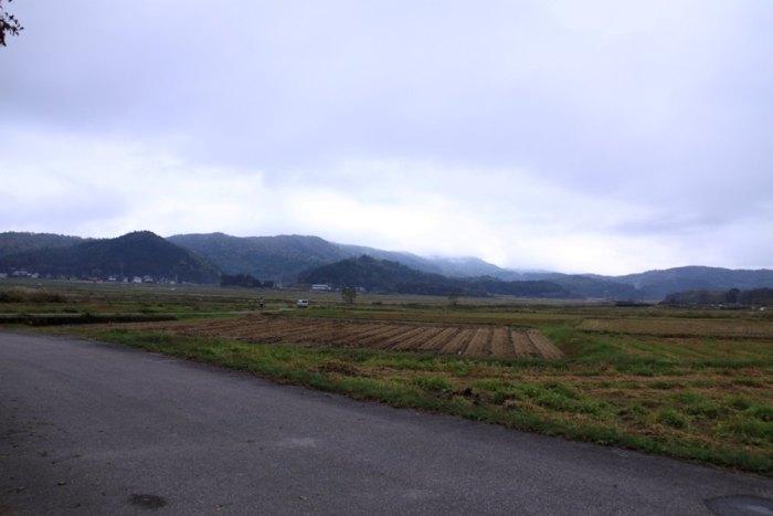 2011_10_15_002.jpg