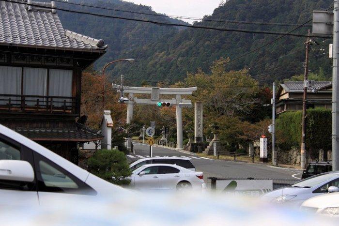 2011_11_02_006.jpg