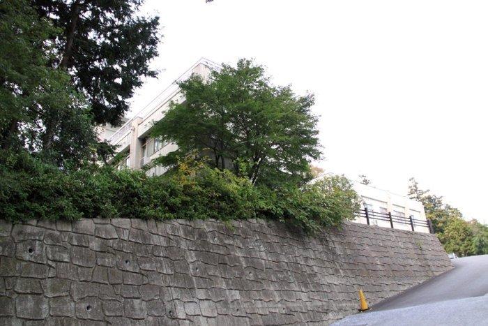 2011_11_02_007.jpg