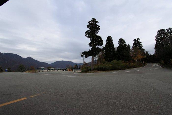 2011_11_03_012.jpg