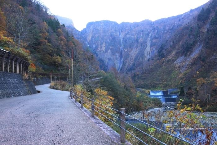 2011_11_04_007.jpg
