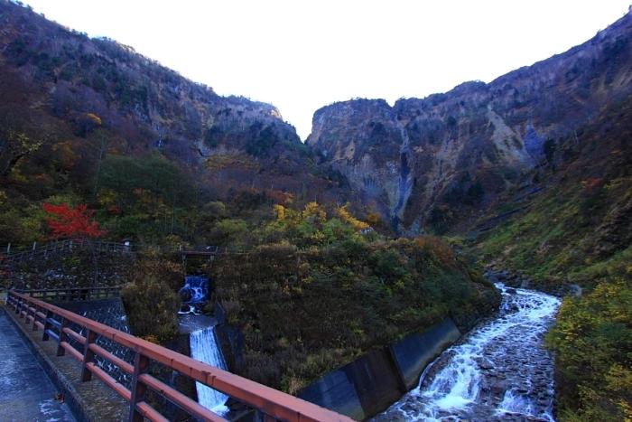 2011_11_04_010.jpg