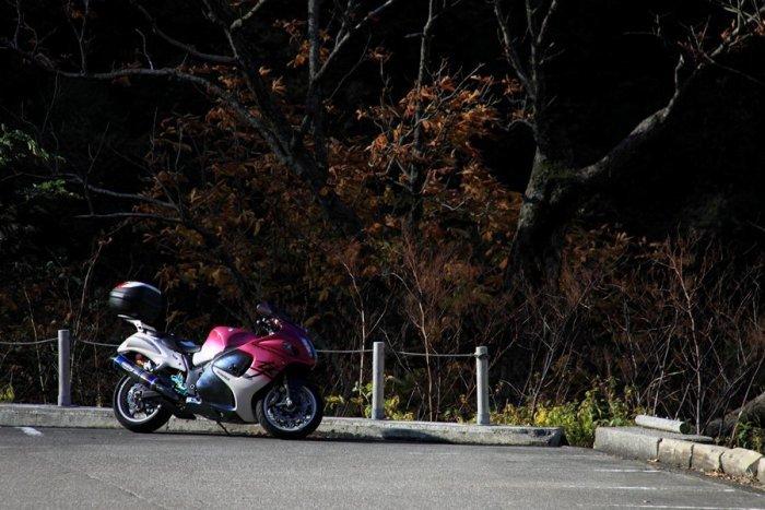2011_11_04_019.jpg