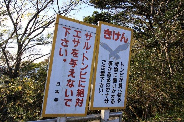 2011_11_16_029.jpg