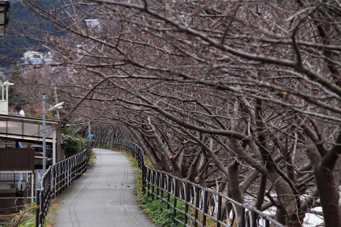 2012_01_14_038.jpg