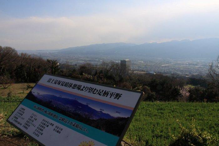 2012_03_26_028.jpg