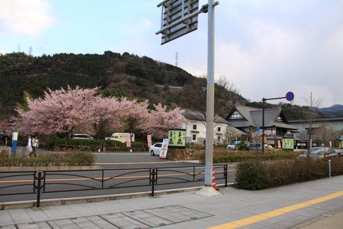 2012_03_26_035.jpg