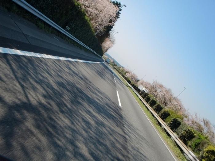2012_04_09_004.jpg