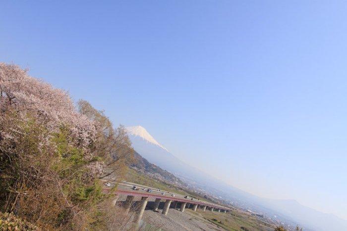 2012_04_09_006.jpg