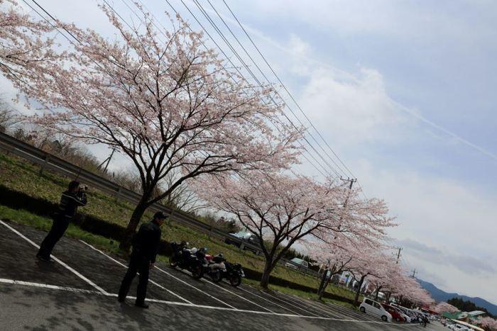2012_04_15_020.jpg