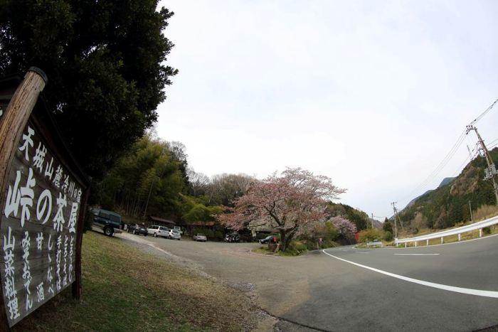 2012_04_15_037.jpg