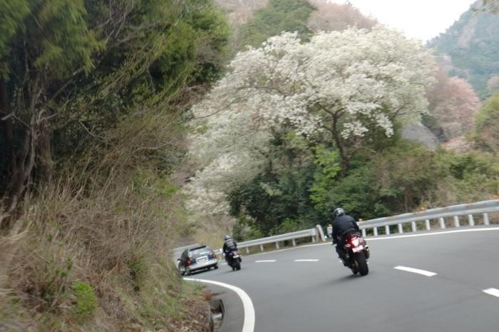 2012_04_15_040.jpg