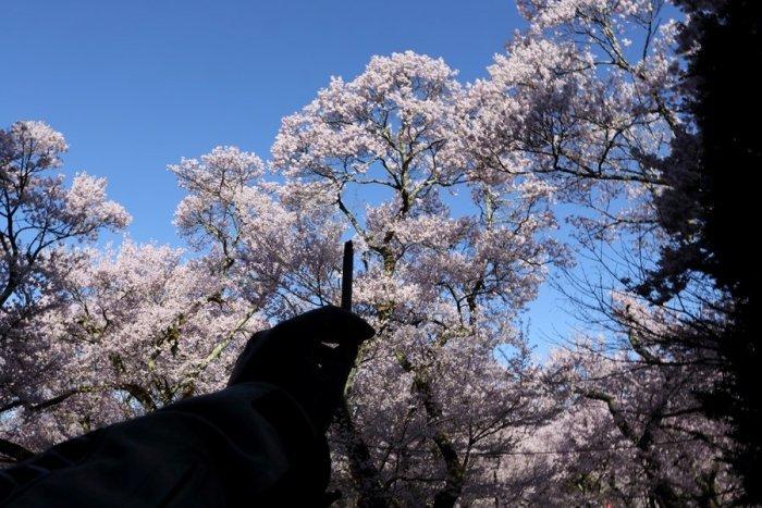 2012_04_24_012.jpg