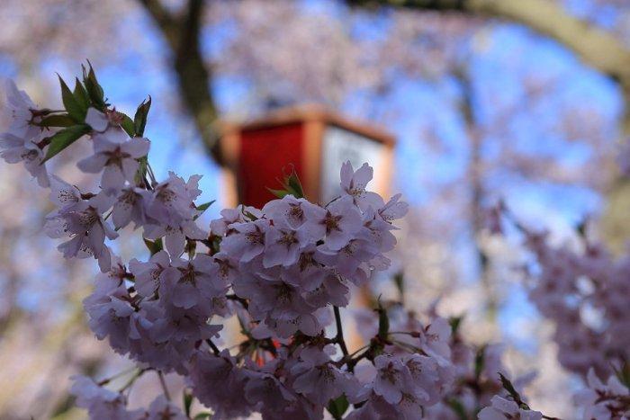 2012_04_24_013.jpg