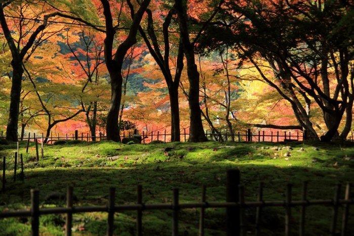 2012_11_13_010.jpg