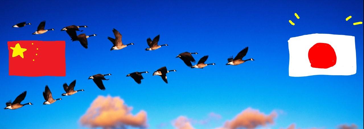 migrate.jpg