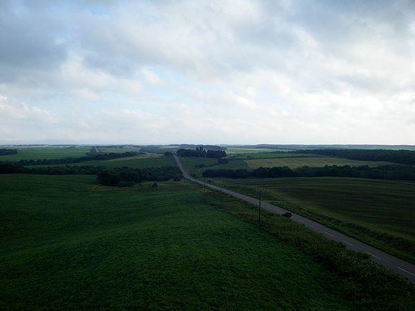 別海の牧草地