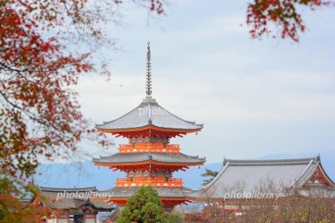 5204084 清水寺の三重塔