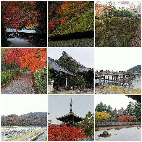 2017 秋の京都(ダイジェスト)