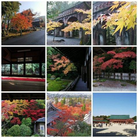 2017 秋の京都(ダイジェスト