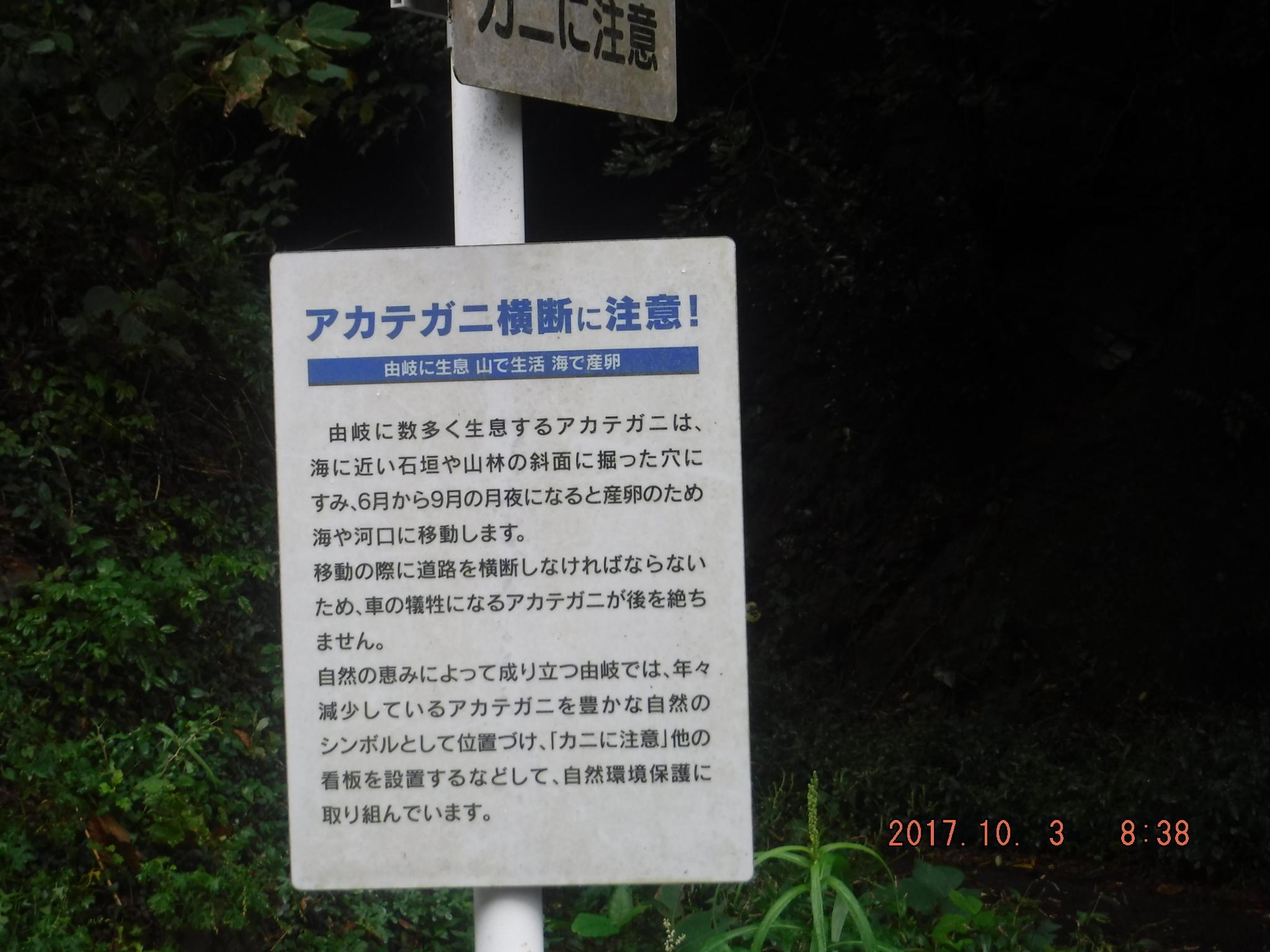 DSCF0442.jpg