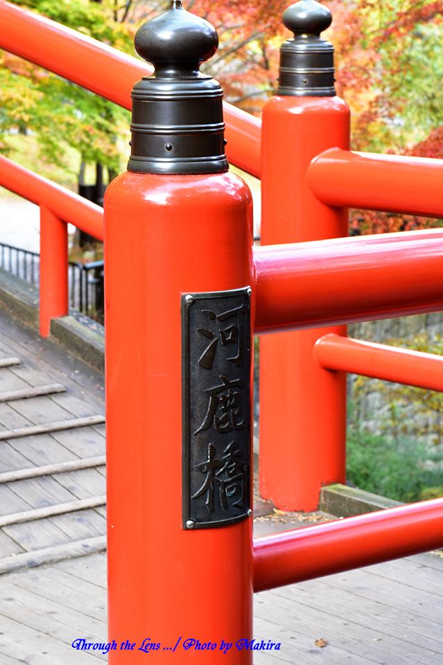河鹿橋と紅葉56D7