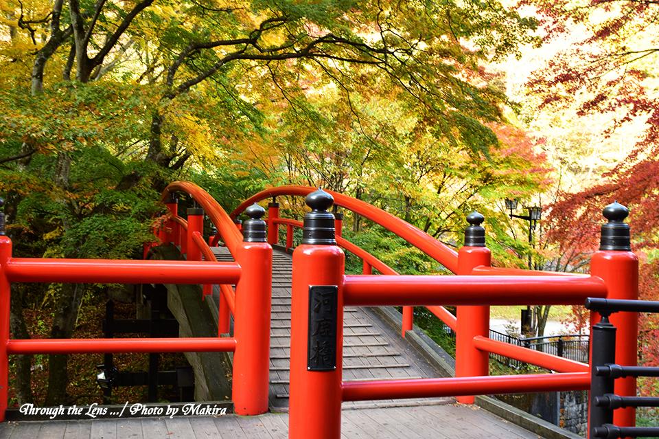 河鹿橋と紅葉56D8