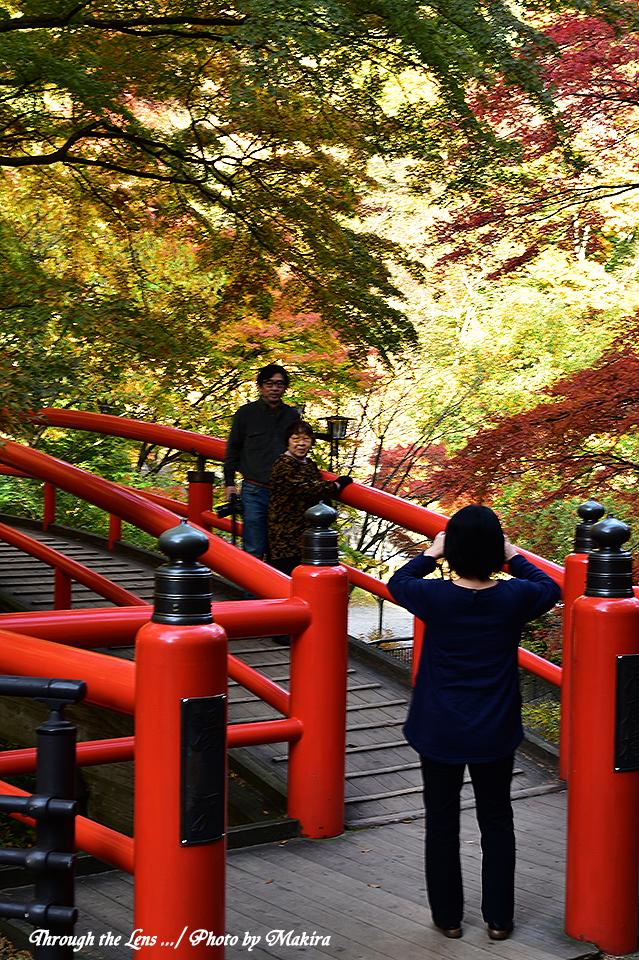 京都から~56D1