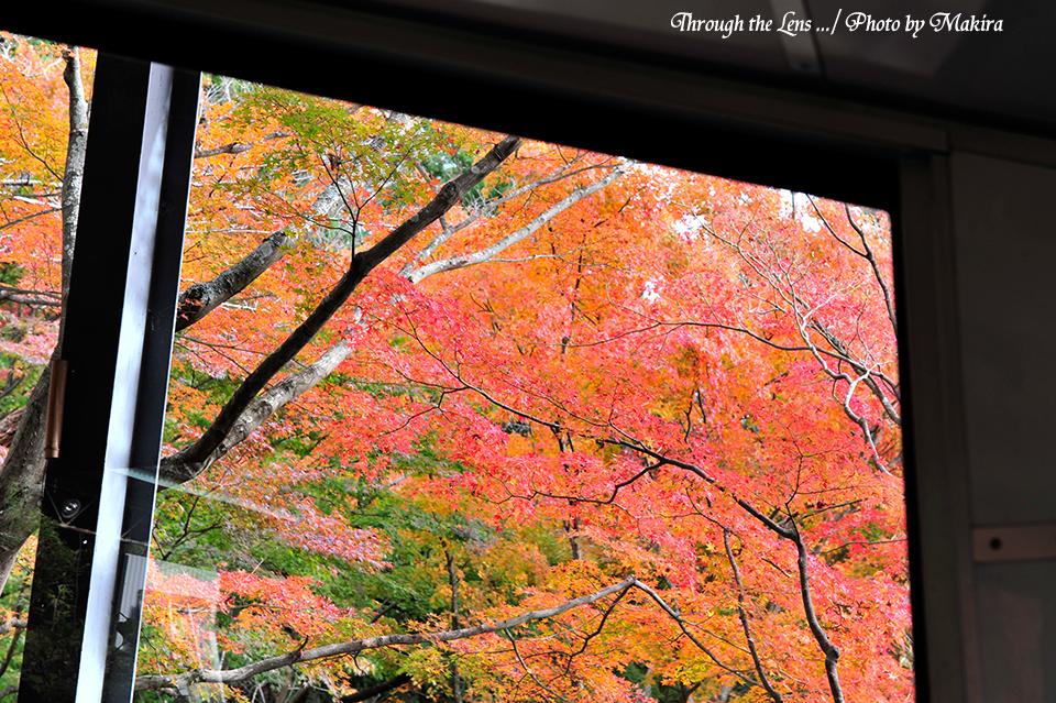 車窓より2