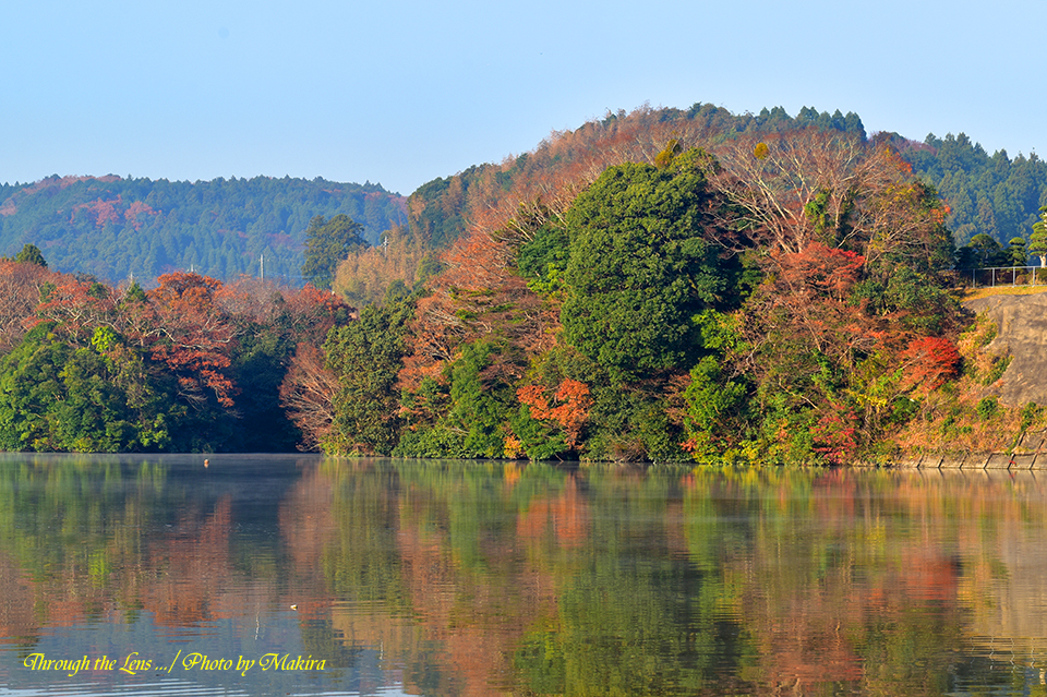 亀山湖56D6