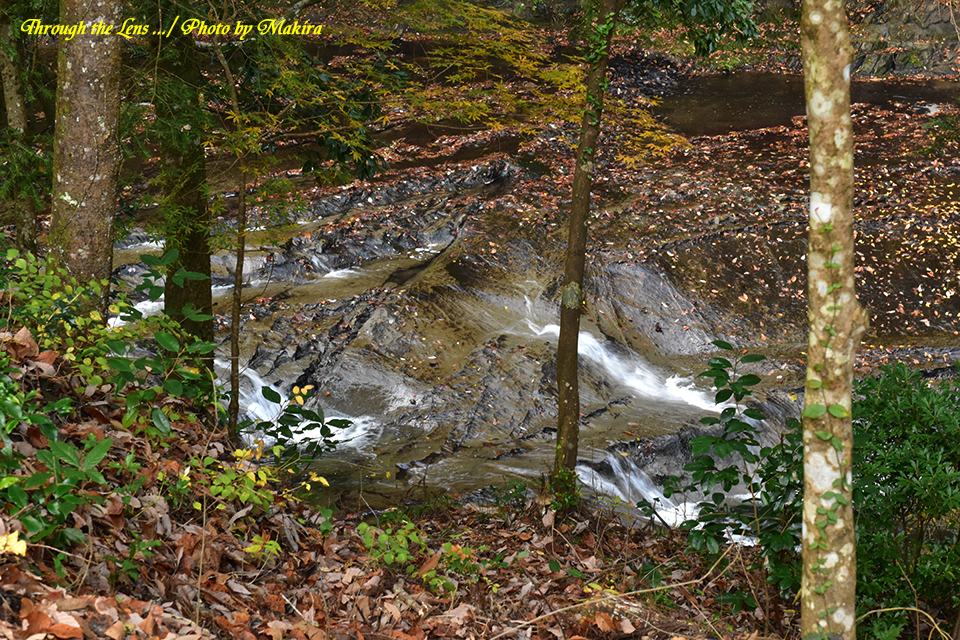 濃溝の滝56D3