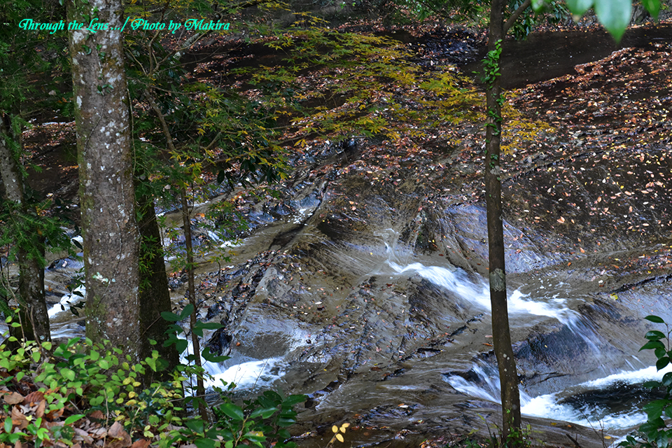 濃溝の滝56D5
