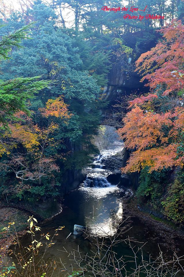 亀岩の洞窟(濃溝の滝)56D12