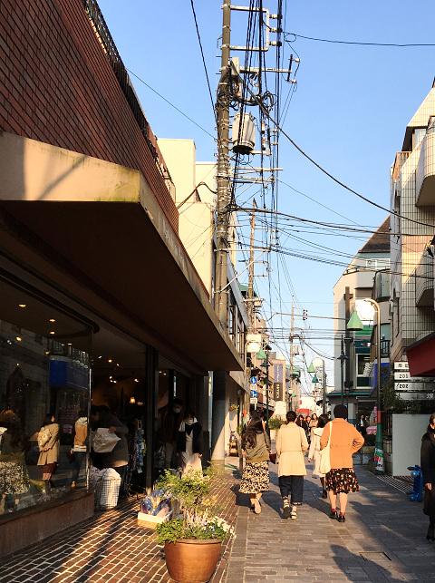 比較的暖かい日が続く11月末の東京3 by占いとか魔術とか所蔵画像