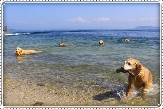 2017,9,28琵琶湖2