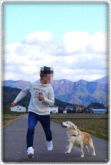 2017,11,17お散歩4